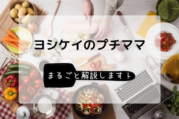 ヨシケイのプチママがある暮らし【まるごと解説します】